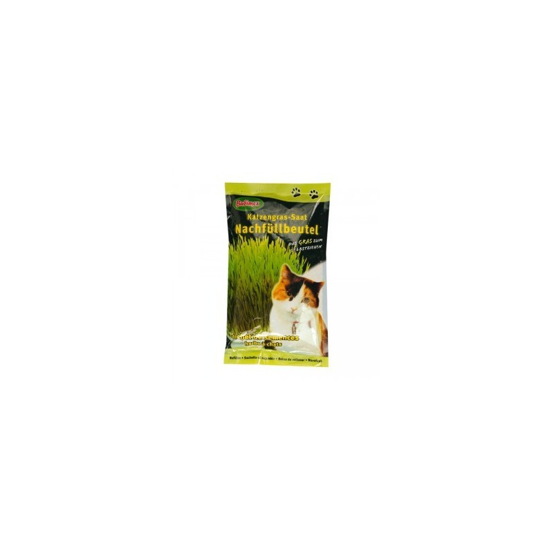 Recharge herbe chat bubimex 100g animiam - Herbe a chat entretien ...