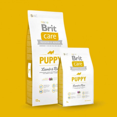 Croquette Brit Care chiot / Puppy all Breed