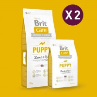 GAGNEZ 10 ERUOS PAR LOT DE 2 : Croquette Brit Care chiot / Puppy all Breed