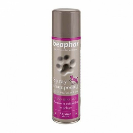 Spray shampoing sec chien et chat